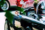 Vintage Grand Prix 013